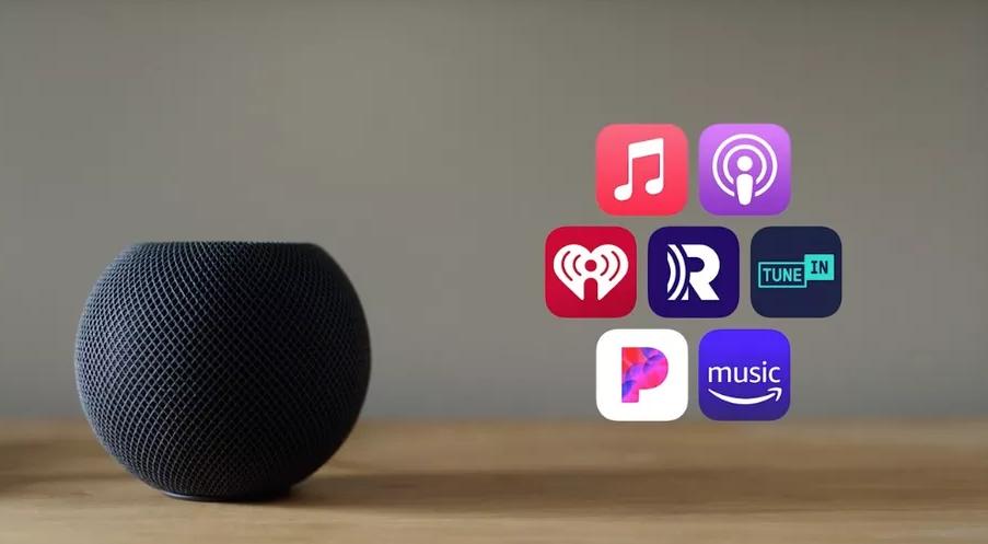 Apple HomePod Mini Space Gray купить в минске